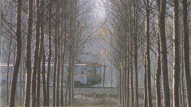 Photo of Trenes Hoy N° 9