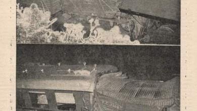 Photo of Accidente en el Ferrocarril Provincial – 1955